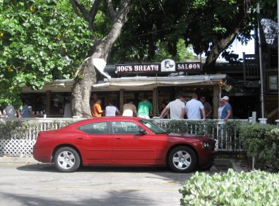 Hanging out at Hog's Breath Saloon in Key West