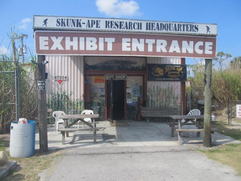 Skunk Ape Research Headquarters